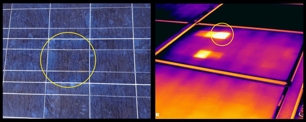 Termografia bava di lumaca su moduli fotovoltaici - Stadio di evoluzione avanzato