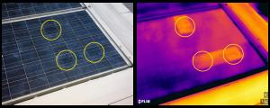 Termografia bava di lumaca su moduli fotovoltaici - Stadio di evoluzione intermedio