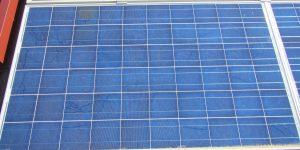 Bava di lumaca su moduli fotovoltaici