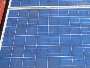 Bava di lumaca su moduli fotovoltaici - dettaglio