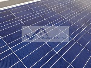 Termografia bava di lumaca su panelli fotovoltaici - Che cosa sono