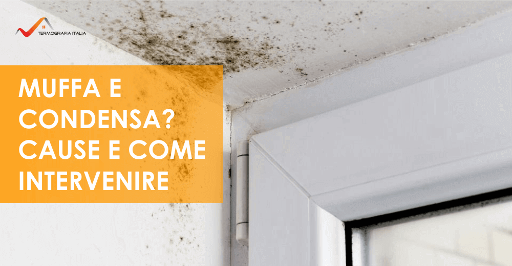 Muffa e condensa in casa: Cause e come intervenire