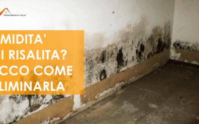 Umidità di risalita: cos'è e soluzioni per eliminarla
